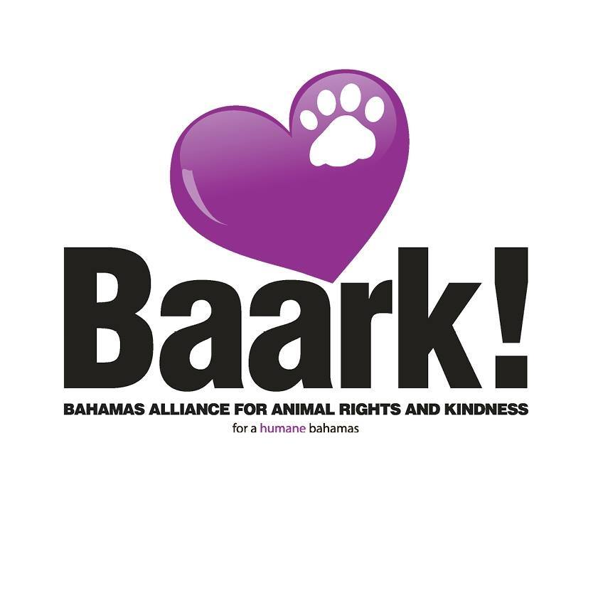 Strut Your Mutt 2019 Hosted by BAARK!