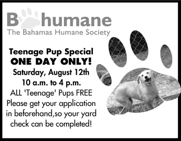 Bahamas Humane Society Adoption Special