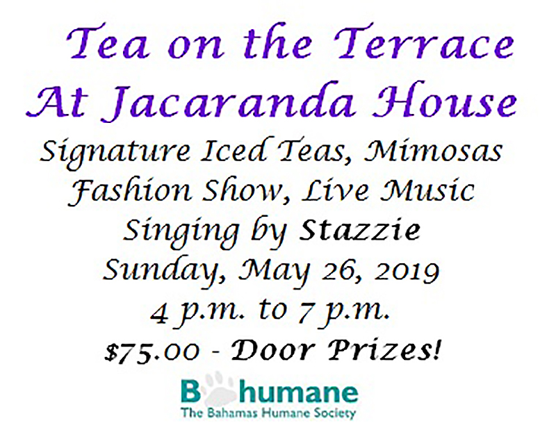 Tea on the Terrace at Jacaranda House