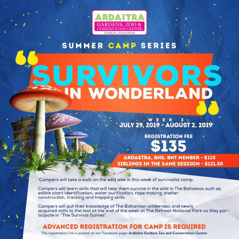Ardastra Summer Camp Season Presents Survivors In Wonderland