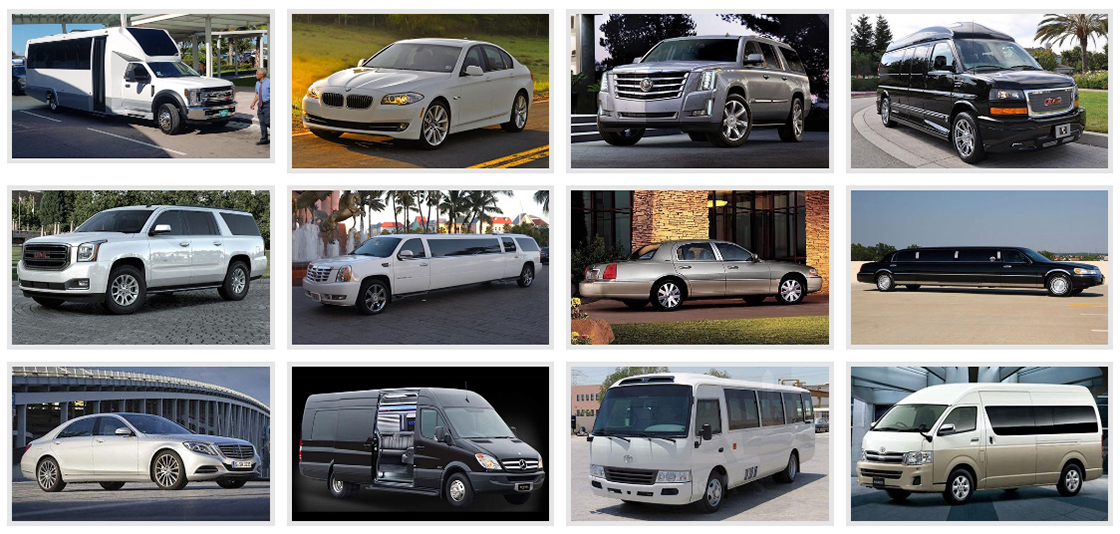 Bahamas Luxury Limo Network