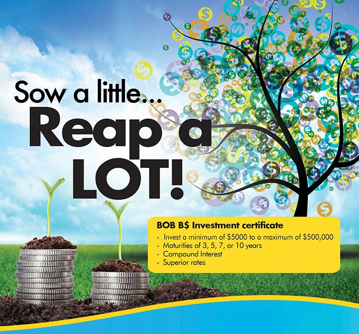 Bank Of The Bahamas Limited | Sow A Little Reap A lot