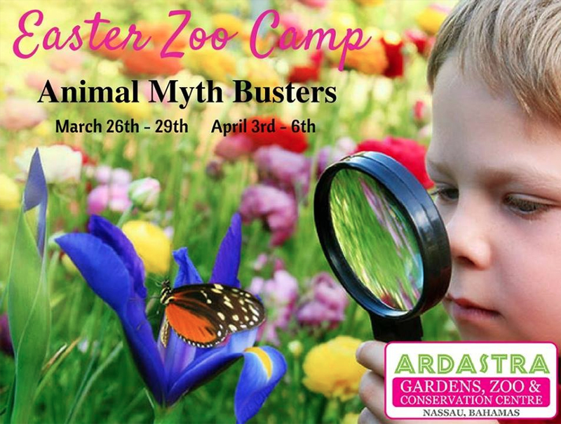 Easter Zoo Camp Hosted by Ardastra Gardens, Zoo and Conservation Centre