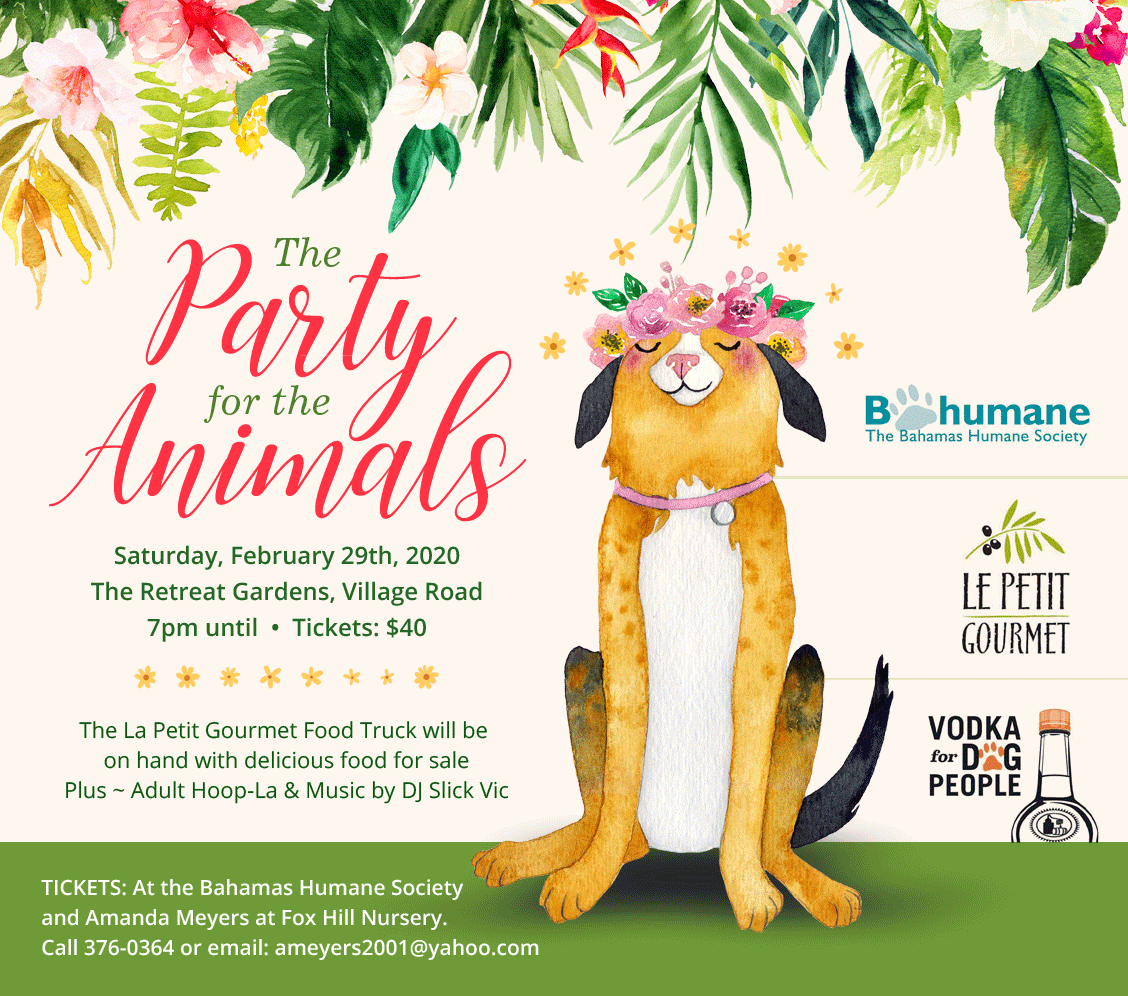 The Party For The Animals