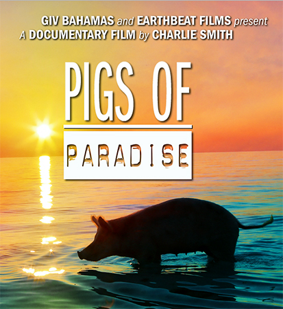 """The feature documentary """"Pigs Of Paradise"""", directed by Charlie Smith"""
