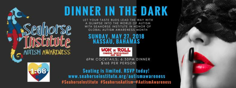 Seahorse Institute's Dinner In the Dark Experience for Autism Awareness