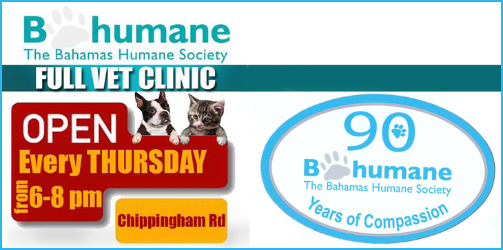 Thursday Evening Full Clinic