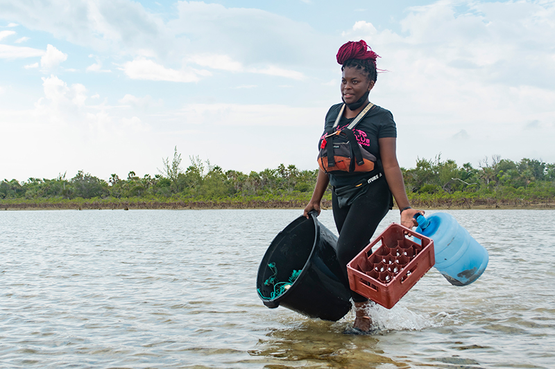 Volunteers at BNT and Corona's Mangrove Cleanup walks with trash collected amongst the mangroves in Mangrove Pond National Park.