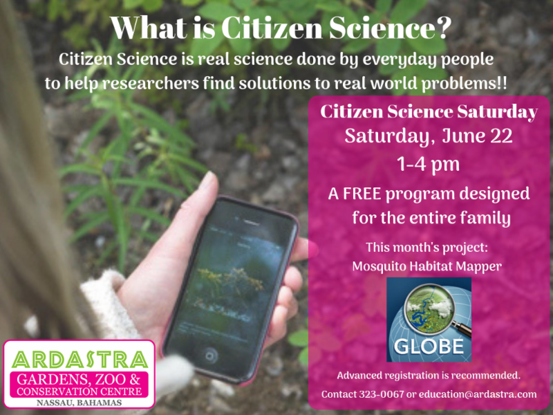 Citizen Science Saturday At Ardastra Gardens Zoo