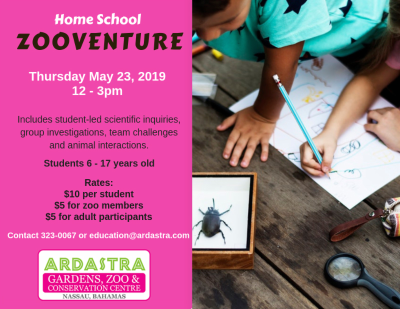 Home School ZooVenture At Ardastra Gardens Zoo