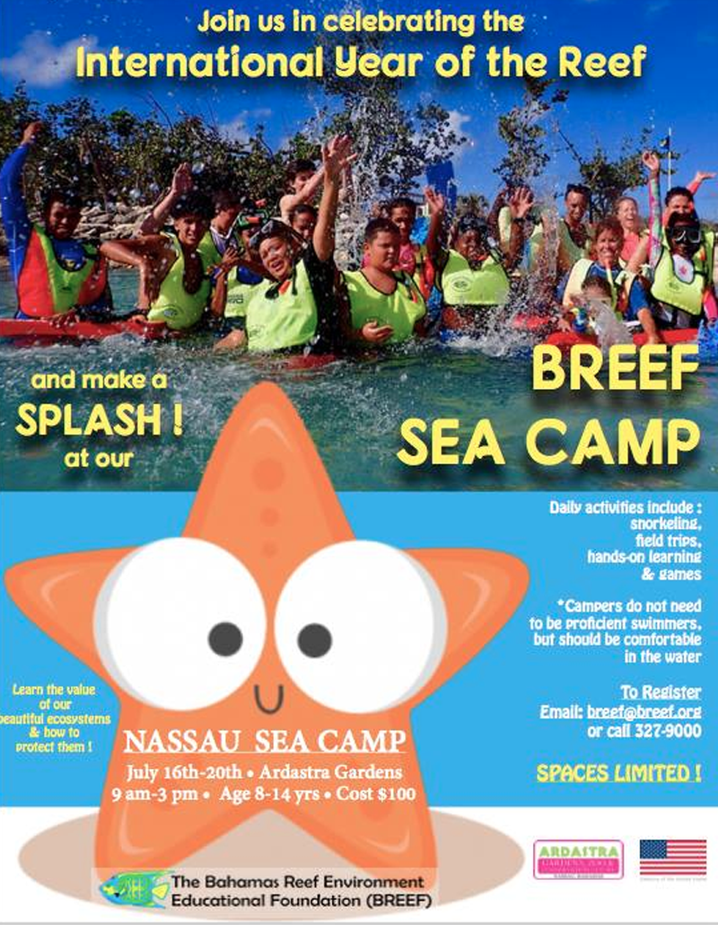 BREEF Nassau Sea Camp