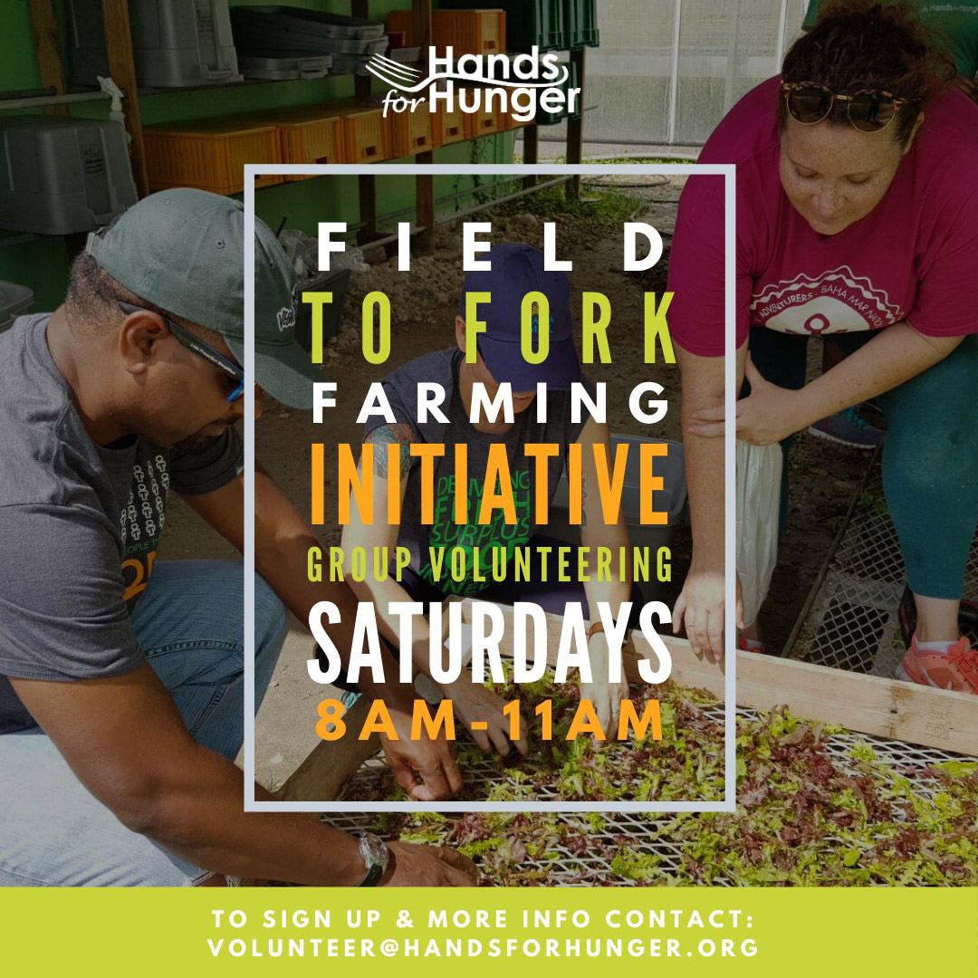 Hands For Hunger | Field to Fork