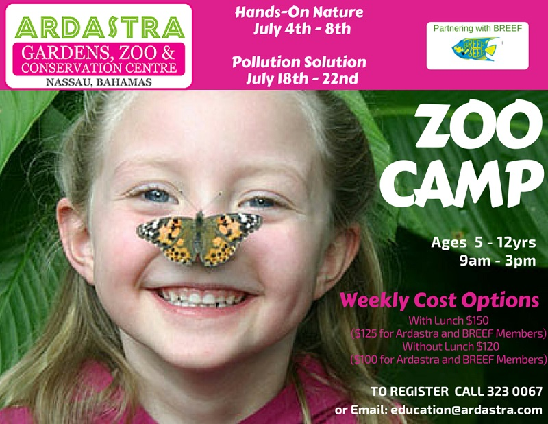 Ardastra Gardens Hands-on Nature Zoo Camp