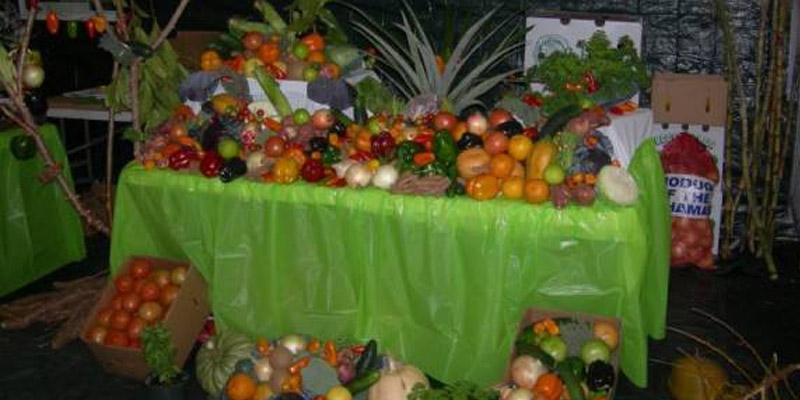 Andros Harvest Festival