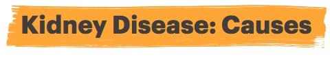 Kidney Disease: Causes