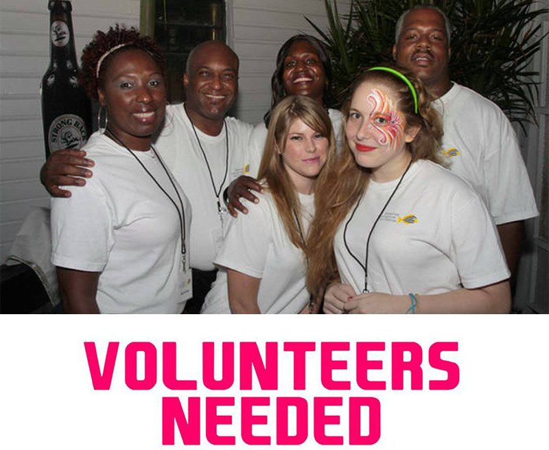 2017 BIFF | Volunteers Needed