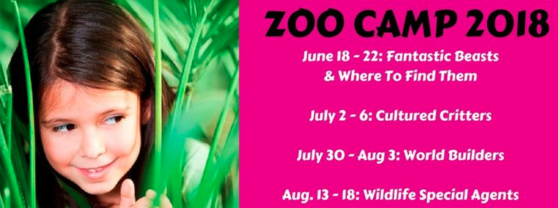 Zoo Camp! Wildlife Special Agents