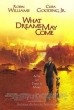 NAGB Film Series: What Dreams May Come 1998
