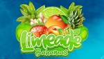 Limeade Bahamas new look, same great taste and many ways to pay!