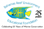 BREEF Awards Green Flag to St. Anne��s School for Excellence in Environmental Education and Practice