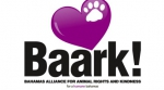 BAARK's Strutt Your Mutt...It's all about the dogs...