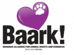 �Purple Paws� Live Auction Success for Non-Profit Group Baark!
