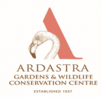 Ardastra Remains Open for Business, Situation could change if local outbreak worsens