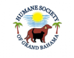 HSGB Celebrates 50 years of caring for four legged friends in Grand Bahama
