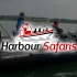 Harbour Safaris launches to rave reviews