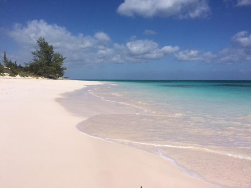 greenwood cat island bahamas estates living terreno