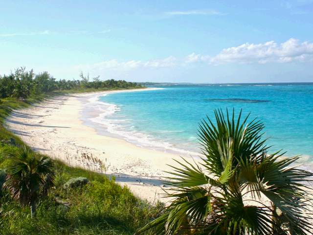 Pineapple Fields Condominium Eleuthera Bahamas