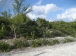 Commercial Property - Eleuthera