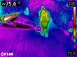 Thermal Inspection